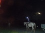 ナイトライディング&お月見外乗