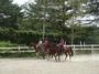 夏休み乗馬学校