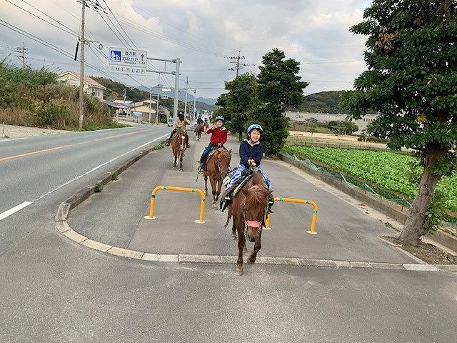 1日乗馬教室