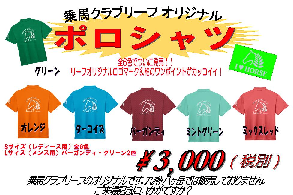 http://www.canacan.jp/news_hokkaido/%E3%83%9D%E3%83%AD%E3%82%B7%E3%83%A3%E3%83%84%E3%83%9D%E3%82%B9%E3%82%BF%E3%83%BC.png