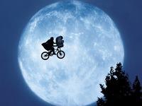 E-T-The-Extra-Terrestrial-et-the-extra-terrestrial-928616_1024_768.jpg