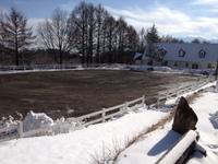 雪上 馬場.jpeg
