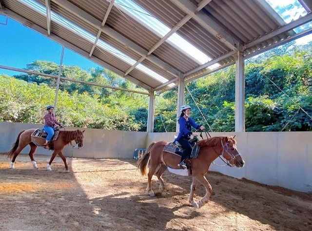 体験乗馬教室